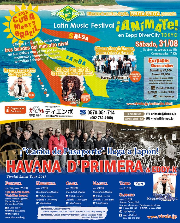 festival latino americano 2013