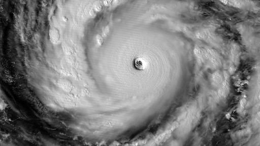 vongfong out 2014