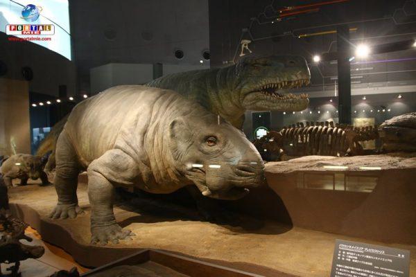 &nbspConsejo de paseo: el increíble Museo de los Dinosaurios