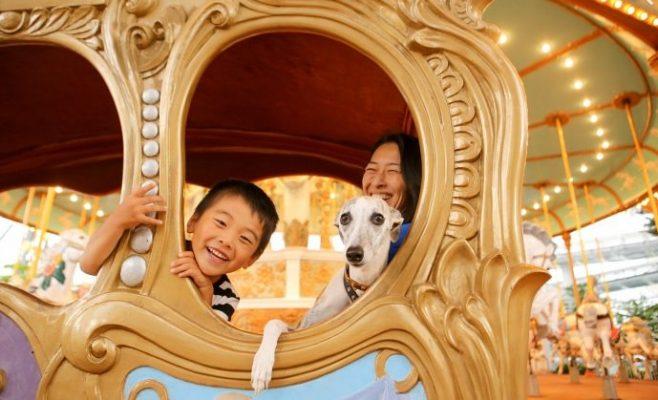 &nbspParque de diversiones en Japón permitirá que visitantes entren a los juegos con sus perros