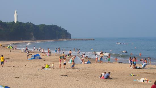 &nbspMás de 30 tiburones en la playa de Ibaraki