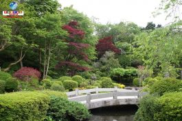 &nbspConozca el Fuji Bussharito Heiwa Park en Shizuoka