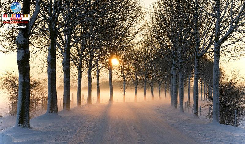 &nbspInvierno podrá ser todavía más frío en Japón