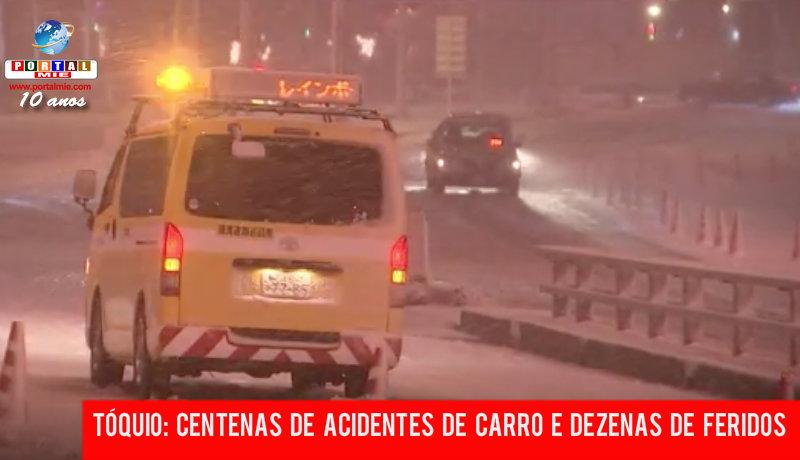 &nbspCasi 500 accidentes en Tokio por causa de la nieve